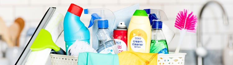 house cleaning products at hollandforyou